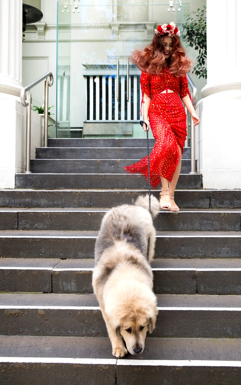 Beauty influencer Hannie Choi with Charli the Tibetan Mastiff at Rakis on Collins hair salon Melbourne